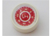 Domed Glass Compass White